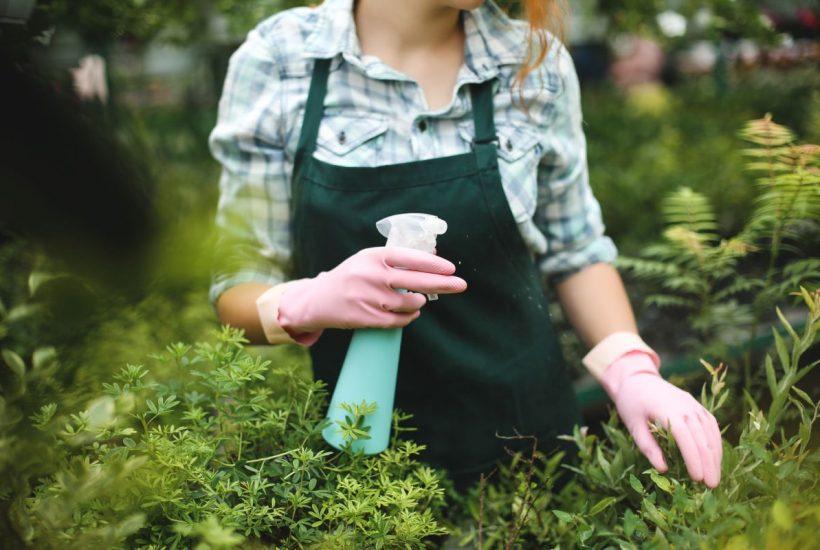 Różnorodne środki ochrony roślin do ogrodu i warzywniaka